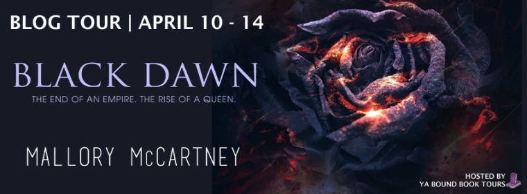 Black Dawn tour banner