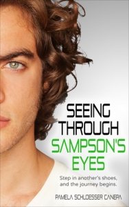 Seeing through Sampson's Eyes