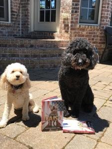Kristin's Dogs